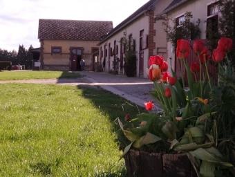 Centre equestre du Mont Houel